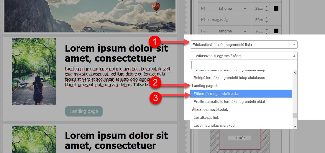 EDM Designer sablon használata - 17